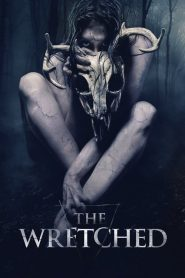 Mẹ Quỷ (2019) | The Wretched (2019)