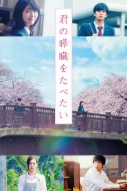 Tớ Muốn Ăn Tụy Của Cậu (2017)   Let Me Eat Your Pancreas (LIVE ACTION) (2017)